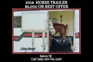 Horse Trailer Available