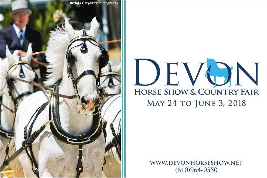 Devon Horse Show (2)