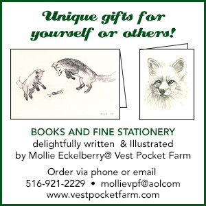 Mollie Eckleberry (2)