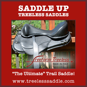 Saddle Up (2)