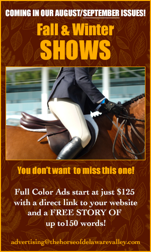 horse del val august ad