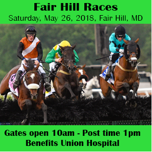 Fairhill Races