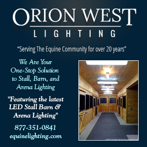 Equine Lighting