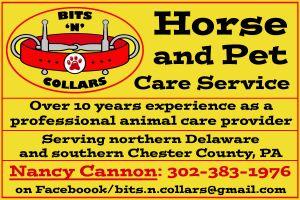Horse & Pet