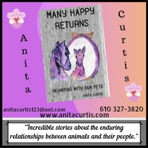 Anita Curtis