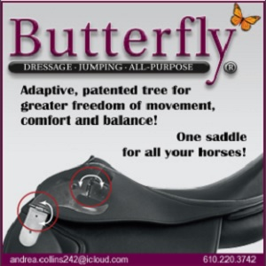 Butterfly Saddles_Andrea Collins