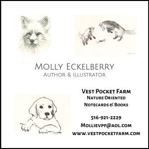 Molly Eckelberry