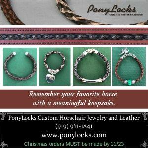 PonyLocks