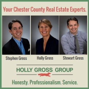 Holly Gross Realty Group