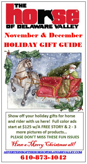 HDELVAL promo Holiday gift guide