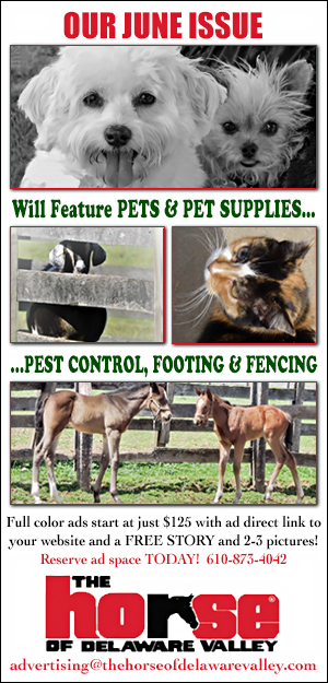 HODV June 2019 Pets & Supplies