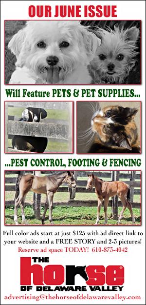 HODV June 2019 Pets & Supplies