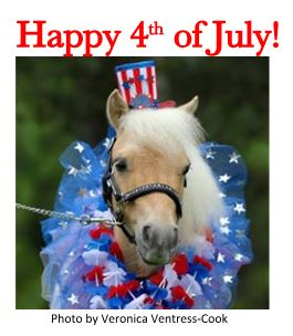 horsedelval 4th of july