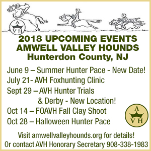 Amwell Valley Hounds