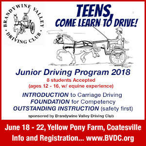 Brandywine Valley Driving Club