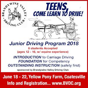 Brandywine Valley Driving Club