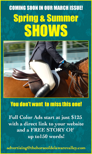 show ad issue ad