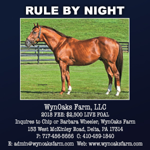 Wyn Oak Farms - Rule by Night