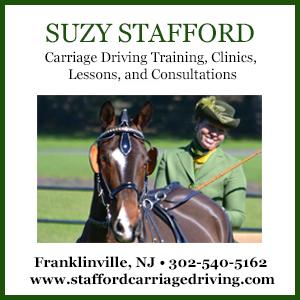 Suzy Stafford