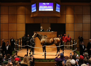 Hip 120 Songbird ring b FTKNOV17 WEB photo Fasig Tipton