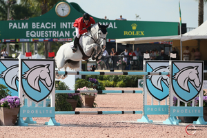 McLain Ward on Clinta