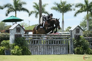 Victoria Colvin on El Primero in the50000 International Hunter Derb Sportfor