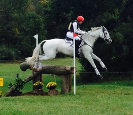 Fair Hill funding horse jumping