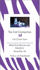 The Cat Connection at Full Circle Farm