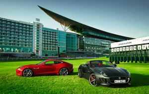Jaguar Style Stakes
