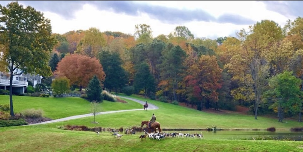 CONTEST CANDID A Riess river hills hounds