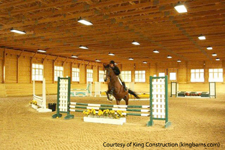 equine lighting right