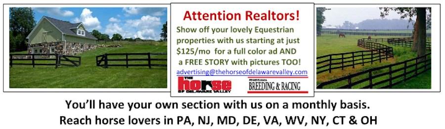 Real Estate Promo Ad